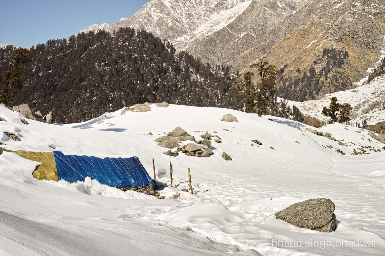 Trek to Snowline- A Trek Above The Triund in -16 degree Winter