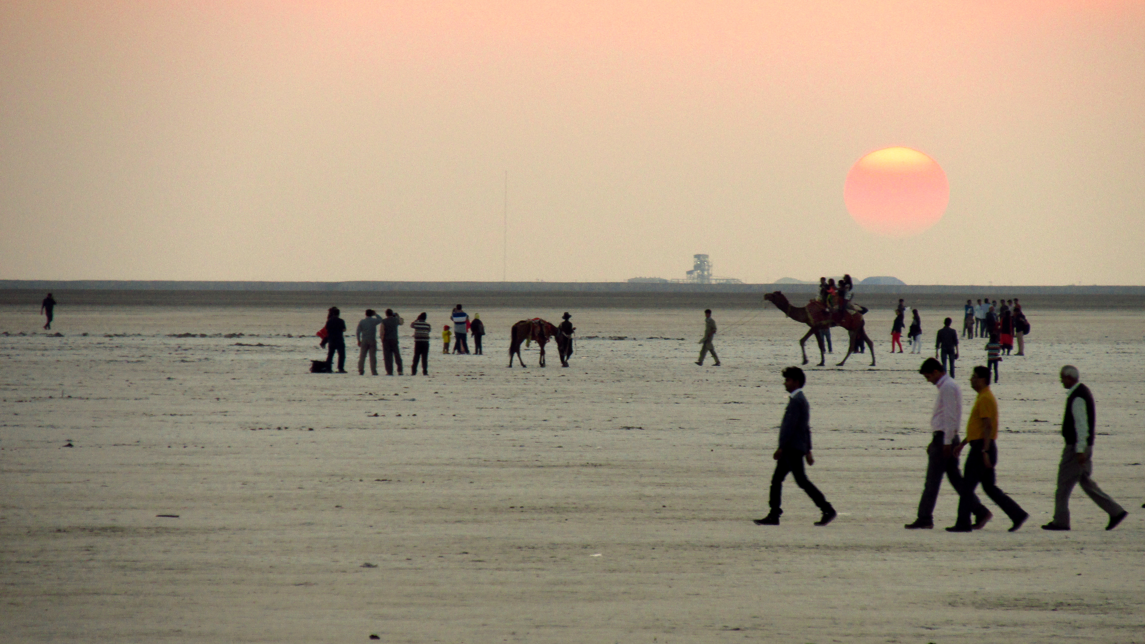 Rann of Kutch - Best Time To Visit - Things To Do